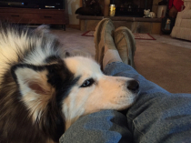 Mac comforts dad