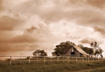 Barn-Storming