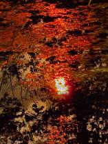 water ripple sunset