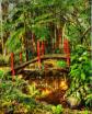 Asian Garden in H...
