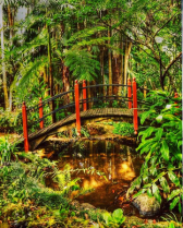 Asian Garden in HDR