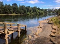 Waikato River, Hamilton NZ