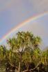 Under the Rainbow...