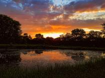 The Prairie Pond