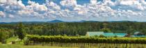 Morgan Ridge Vineyards Panorama