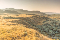 Milk River Natural Area Morning Fog