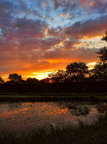 Rock Falls Prairie Pond At Sunrise