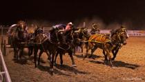 Chuckwagon Races