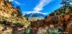 Sierra Nevada Sum...