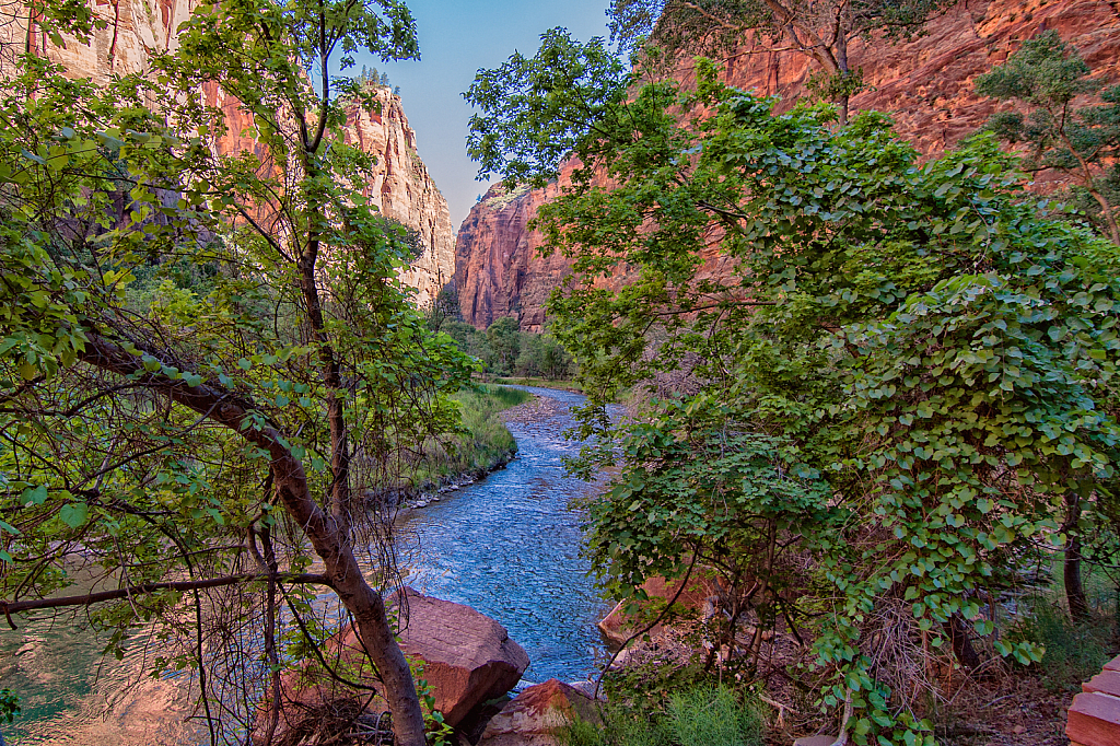 The Narrows of Zion - River View