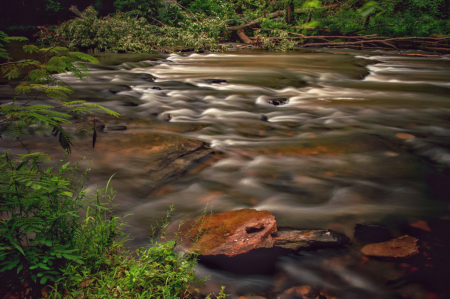 Slowing Down The Rapids