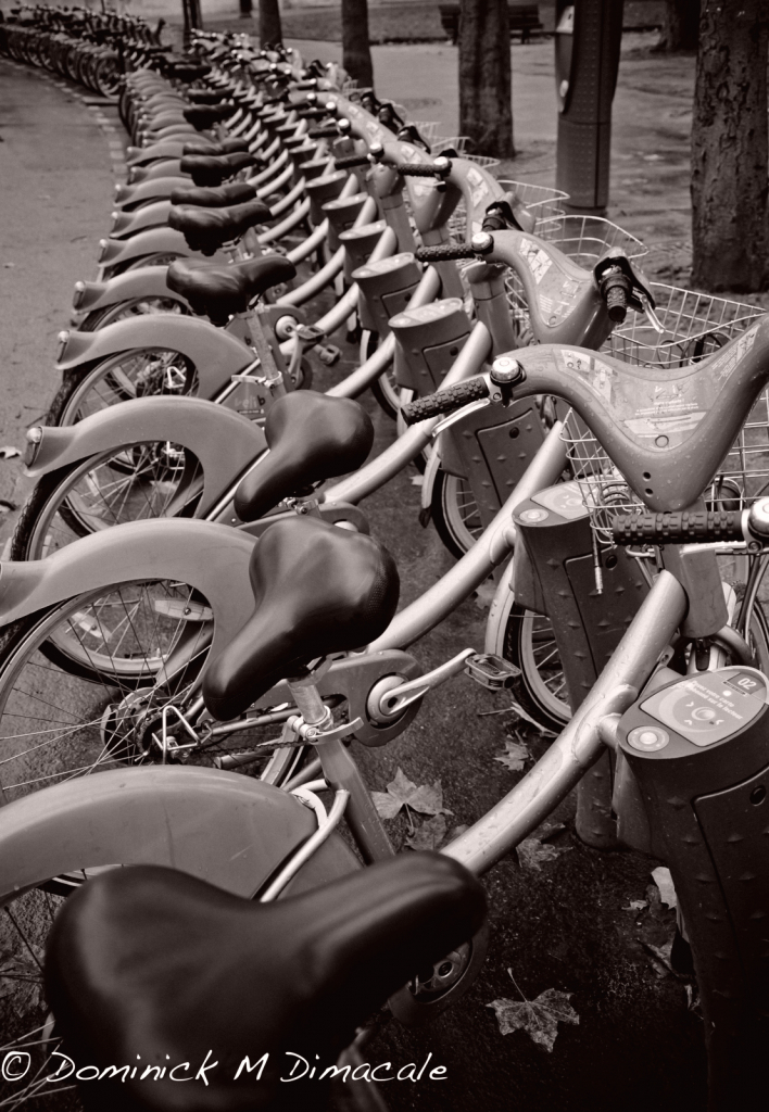 ~ ~ PARKED BICYCLES ~ ~