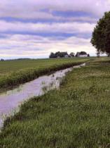 More Farm Creeks