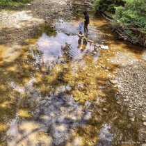Hiking Reflections