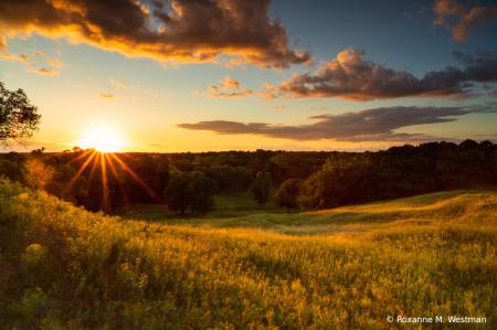 Golden North Dakota sunset