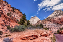 Escape to Zion National Park