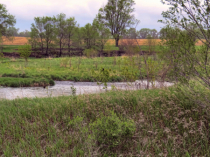 More Former Quarry Ponds