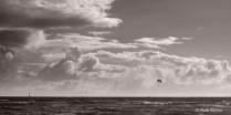 Oahu ocean scape