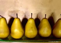 Pear Shadows