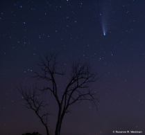 Comet and meteor in the night skies