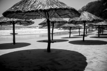 palapa shadows