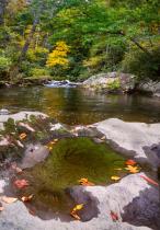 the Highlands of North Carolina