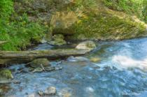 Stream in Costa Rica