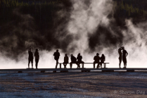 Joy of Yellowstone