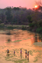 Yinn Seik Sunset