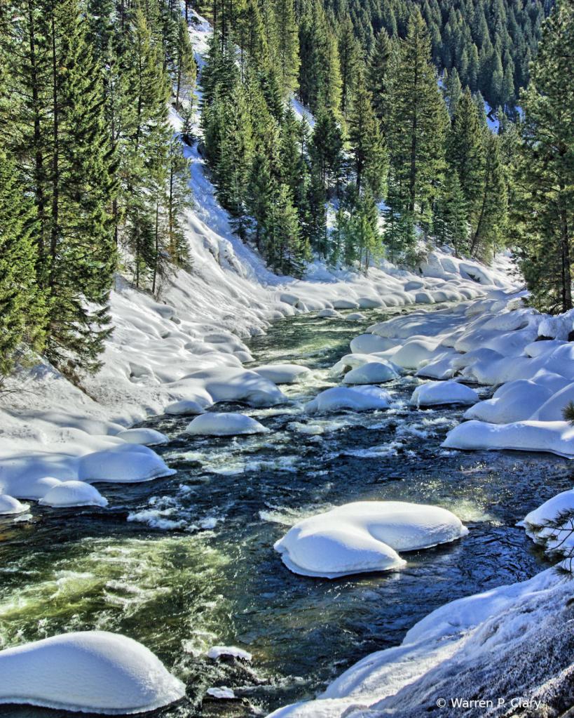 Green trees, snow, reflective stream