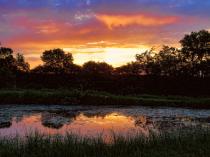 Prairie Area Pond