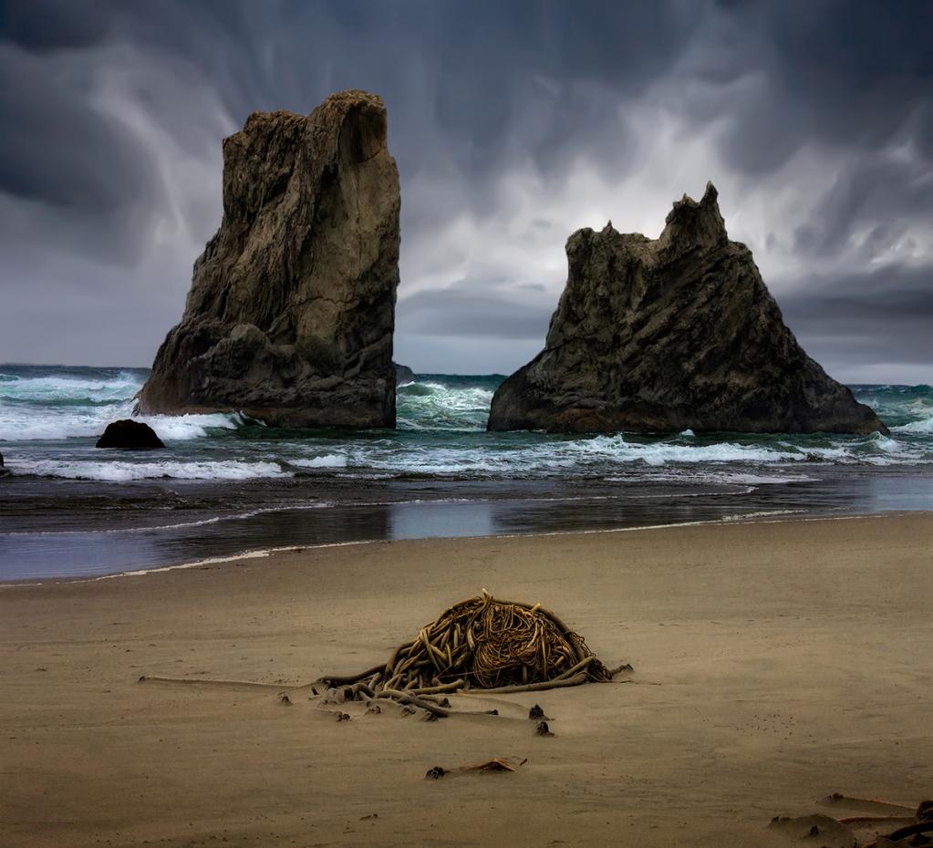 Midday Oregon Beach
