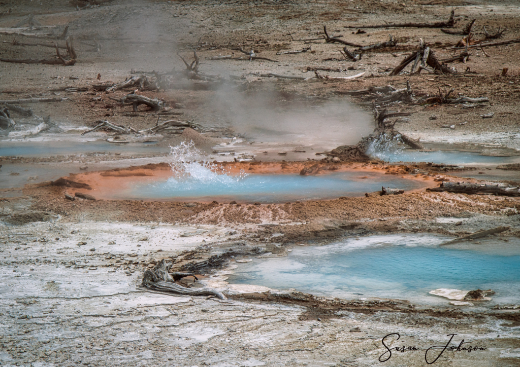 Yellowstone Geysers - ID: 15835980 © Susan Johnson