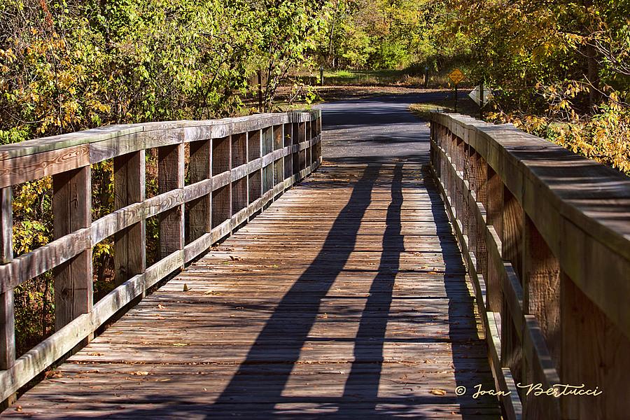 A Bridge in Arkansas