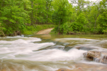 Ozark Stream