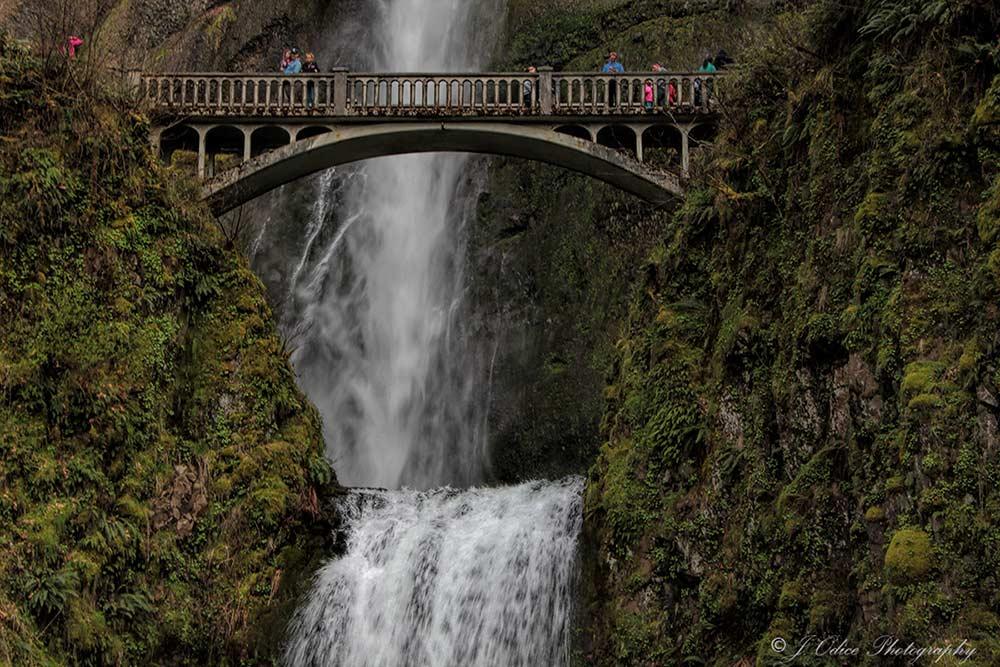 Multnomah Falls #1