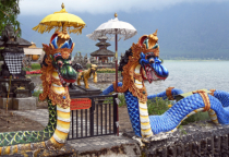 Dragons in Bali
