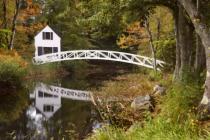 On Golden Pond?