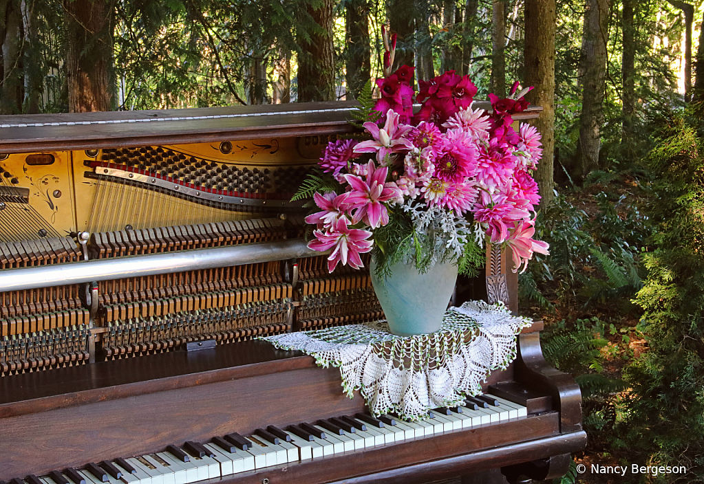 Harmony in the Garden