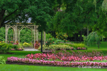 Gazebo in the Garden, Stratford, ON, Canada
