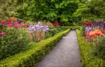 Summer Garden at Peacefield