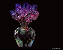 Swarovski Crystal Roses