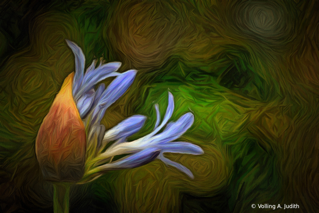 F10 - ID: 15846412 © Volling A. Judith