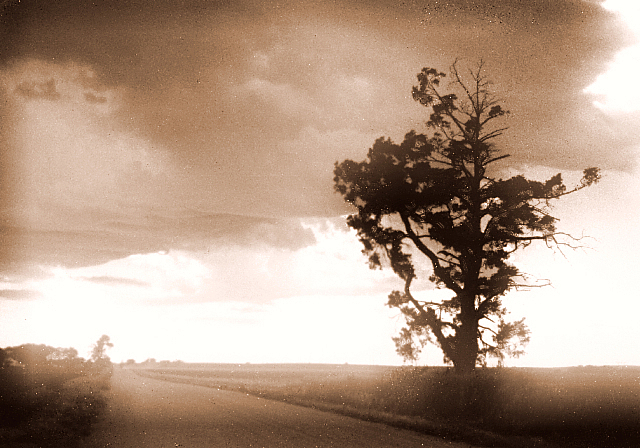 Dusty Country Lane