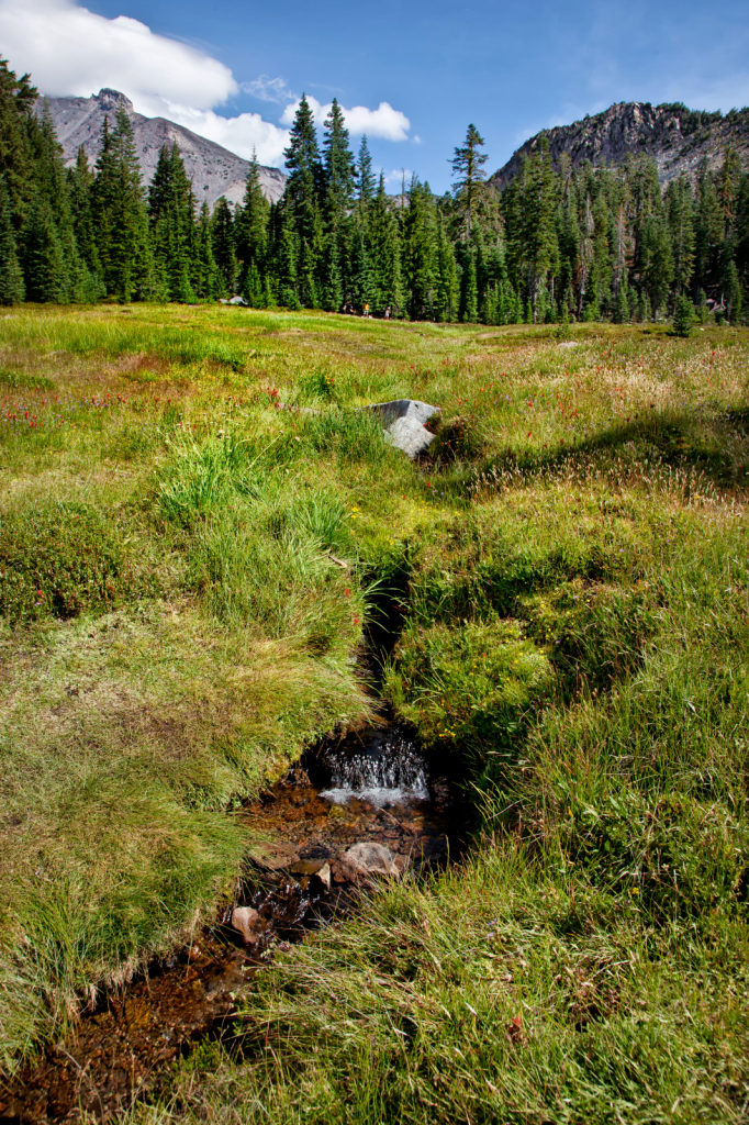 Upper Panther Meadows