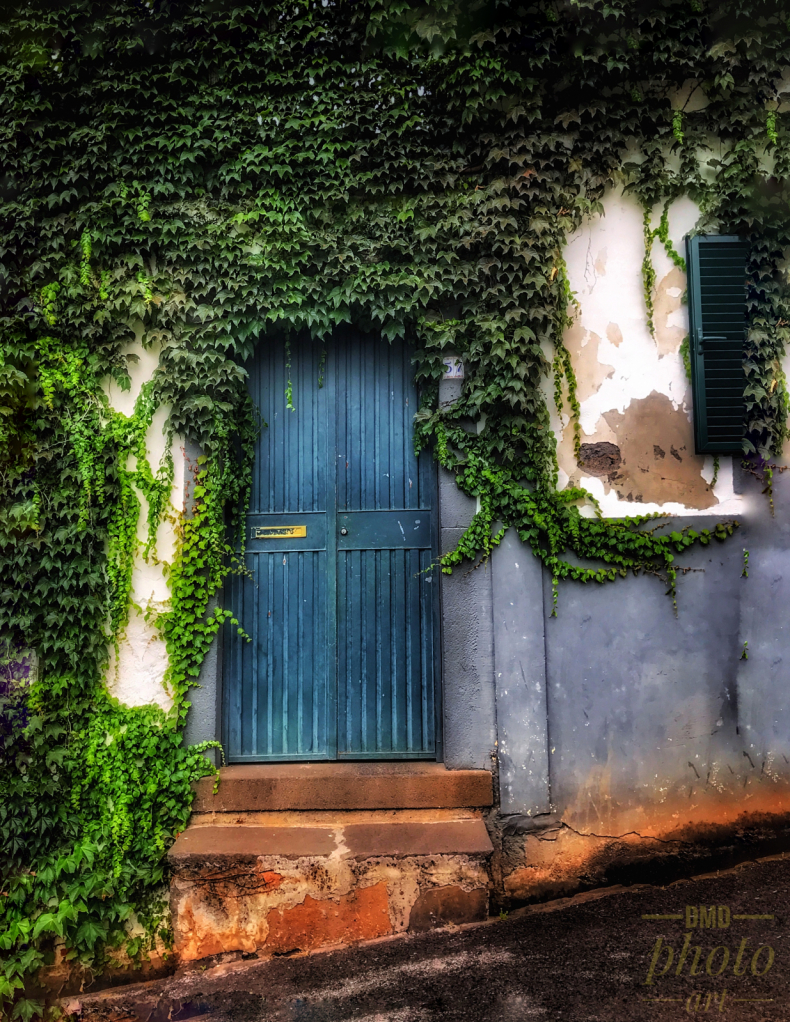 ~ ~ THE GREEN DOOR ~ ~