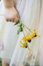 Sunshine & Flowers