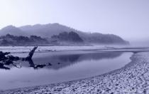 Foggy reflections on the Oregon Coast