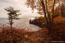 View of Lake Superior through fall trees