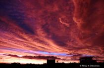 Hurricane Lorena Sunset